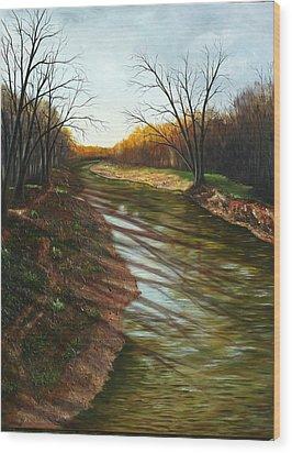 Duffins Creek Ajax Wood Print by Sharon Steinhaus