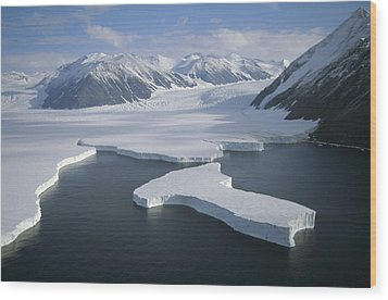 Dugdale And Murray Glaciers Antarctica Wood Print by Tui DeRoy