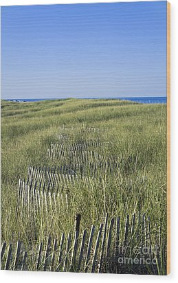 Dune Fence Wood Print by John Greim