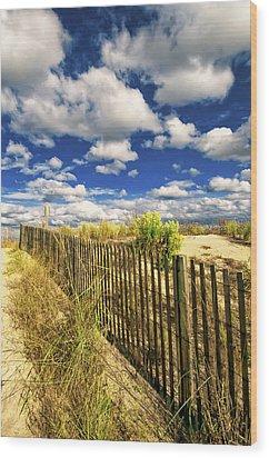 Dune Fence Me In Wood Print by Jim Moore