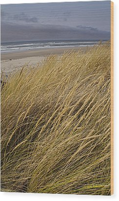 Wood Print featuring the photograph Dune Grass On The Oregon Coast by Mick Anderson