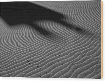 Dune Tracks Wood Print by Rob Outwater