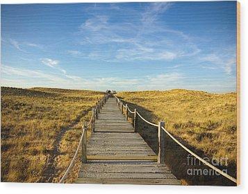 Dune Walkway Wood Print by Carlos Caetano
