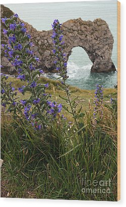 Wood Print featuring the photograph Durdle Door by Milena Boeva