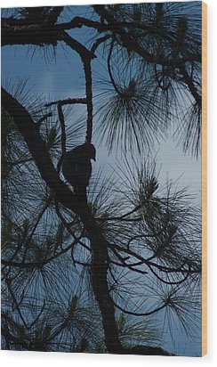 Wood Print featuring the photograph Dusk by Joseph Yarbrough