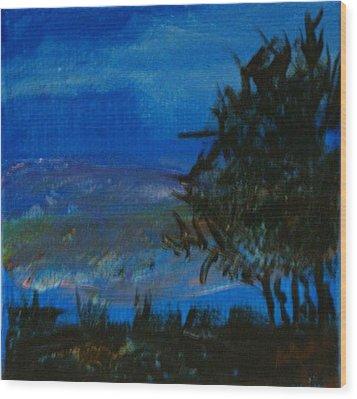 Dusk Til Dawn Wood Print