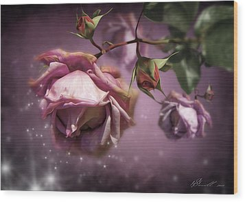 Dusky Pink Roses Wood Print by Svetlana Sewell