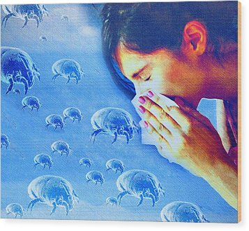 Dust Mite Allergy, Conceptual Artwork Wood Print by Hannah Gal