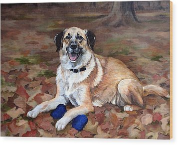 Wood Print featuring the painting Dutch Shepherd by Sandra Chase