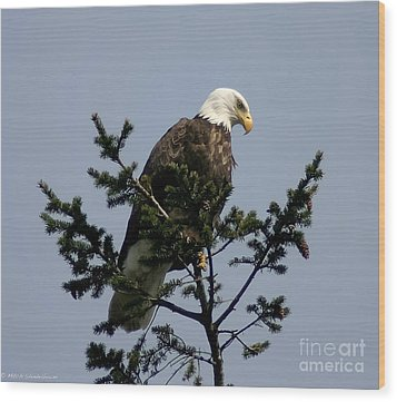 Wood Print featuring the photograph Eagle Eye Vista by Mitch Shindelbower