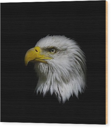 Wood Print featuring the photograph Eagle Head by Steve McKinzie