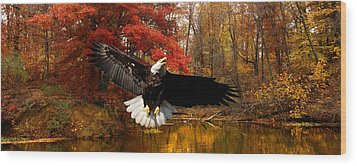 Wood Print featuring the photograph Eagle In Autumn Splendor by Randall Branham