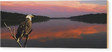 Wood Print featuring the photograph Eagle Overlooking Domain by Randall Branham