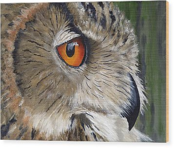 Eagle Owl Wood Print by Mike Lester