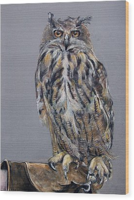 Eagle Owl Wood Print by Tanya Patey