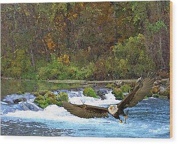 Eagle Snatch Wood Print by Julie Grace