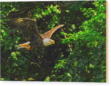 Wood Print featuring the photograph Eagle Taking Lunch To Her Babies by Randall Branham