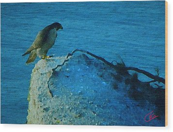Eagle View Wood Print by Colette V Hera  Guggenheim