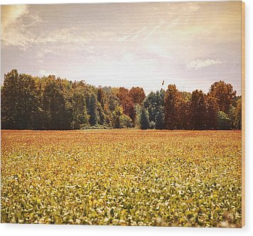 Early Autumn Harvest Landscape Wood Print by Jai Johnson