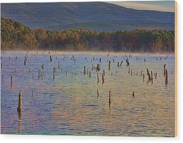 Early Morning Color Of Lake Wilhelmina-arkansas Wood Print by Douglas Barnard