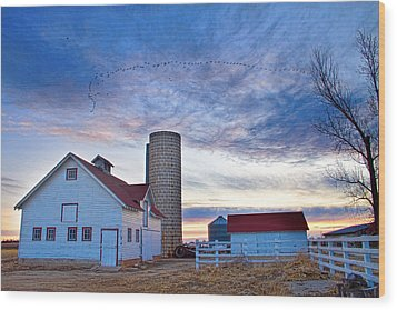 Early Morning On The Farm Wood Print by James BO  Insogna