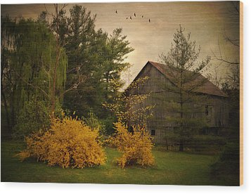 Early Spring Wood Print by Kathy Jennings