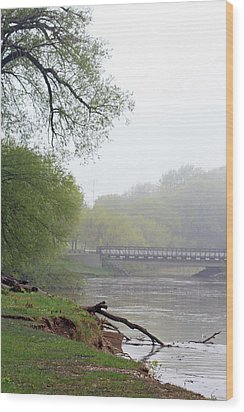 Wood Print featuring the photograph Early Spring Morning Fog by Kay Novy