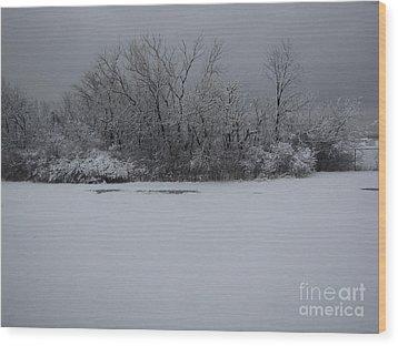 Early Spring Snow Fall Wood Print by Cedric Hampton
