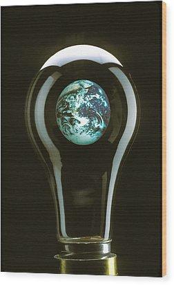Earth In Light Bulb  Wood Print by Garry Gay
