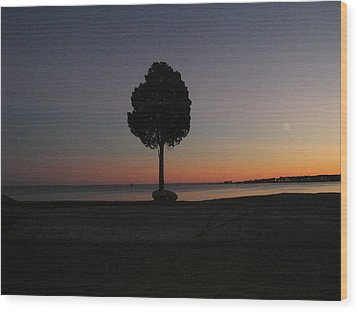 Eastern Sunset And Moon Rise Wood Print by Bruce Carpenter