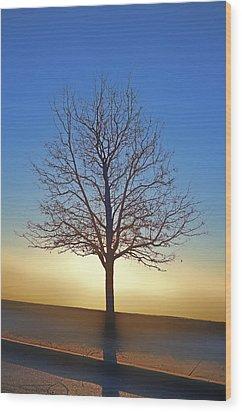 Eden Tree Wood Print