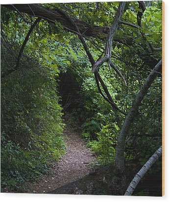 Edge Of The Shire Wood Print