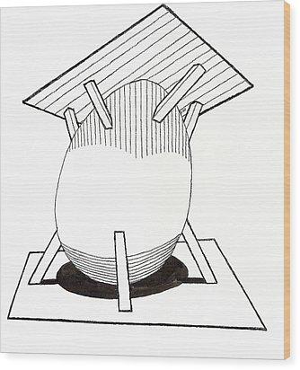 Egg Drawing 030037 Wood Print