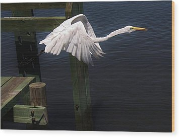 Egret Coming Off The Block Wood Print by Paulette Thomas