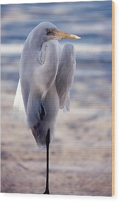 Egret Key West Wood Print