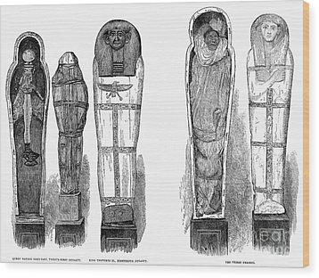 Egypt: Royal Mummies, 1882 Wood Print by Granger