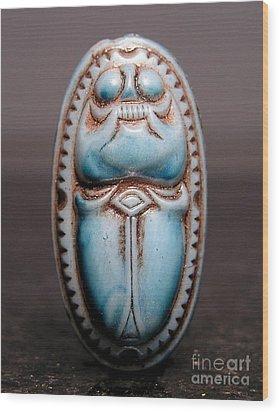Egyptian 377 Wood Print by Dwight Goss