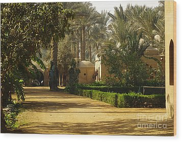 Egyptian Courtyard In The Late Afternoon Wood Print by Mary Machare