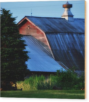 Ehoes Of A Milk Barn Wood Print by Mary Frances