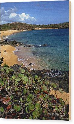 El Convento Beach Wood Print by Thomas R Fletcher