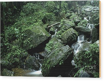 El Yunque National Forest Rocks And Waterfall Wood Print by Thomas R Fletcher