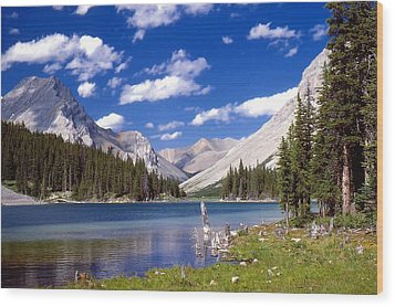 Elbow Lake Wood Print by Jim Sauchyn