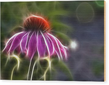 Electrified Coneflower Wood Print by Lynne Jenkins