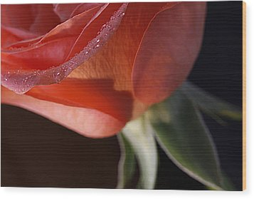 Elegance L Wood Print by Shirley Mitchell