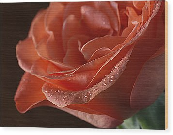 Wood Print featuring the photograph Elegance  by Shirley Mitchell