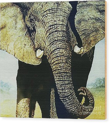 Wood Print featuring the painting Elephant Close-up by Hartmut Jager