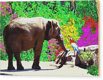Elephant-parrot Dialogue Wood Print by Romy Galicia