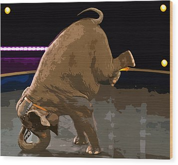 Wood Print featuring the photograph Elephant Perfomance At Circus by Susan Leggett
