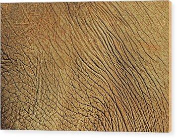 Elephant Skin Wood Print by Daniela Duncan