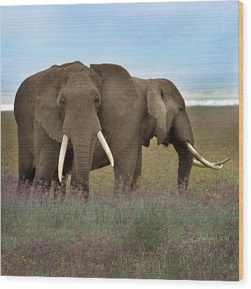 Elephants Of The Crater Wood Print by Joseph G Holland